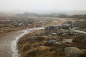 Näsbokroks naturreservat, Halland