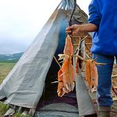 Röka sik i lappkåta, Lappland