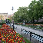 Mariatorget i Stockholm