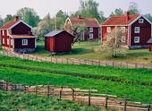 Lantgård vid gärdesgård