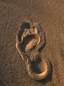 Fotspår