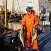 Fiskare med fiskefångst, Bohuslän