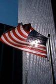 USA:s flagga vid skyskrapa
