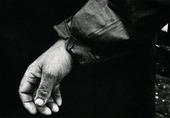 En yrkesfiskares hand