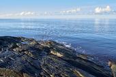 Kippor vid havet