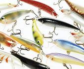 Fiskedrag