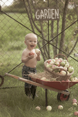 Liten pojke vid skottkärra full med frukt