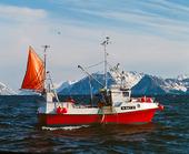 Fiskebåt vid Lofoten, Norge