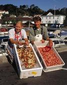 Försäljning av skaldjur
