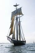 Segelfartyg Californian i San Diego, USA
