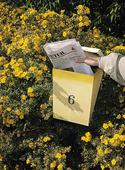 Morgontidning i postlåda