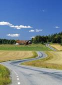 Krokig landsväg