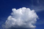 Cumulusmoln