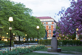 Mariatorget på Södermalm i Stockholm
