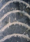 Mönster på begagnat däck