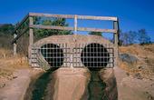 Gallerförsedda kulvertmynningar