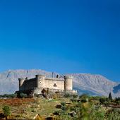 Castle of Mombeltran i Avila Spanien