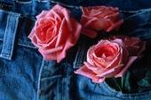 Rosor på jeans