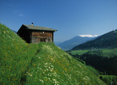 Stuga i alperna, Österrike