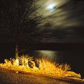 Fullmåne över sjö