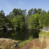 Nerlagd järnmalmsgruva på Utö, Stockholms skärgård