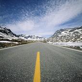 Landsväg, Norge