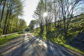 Landsväg i vårsol