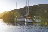 Segelbåtar i naturhamn, Bohuslän