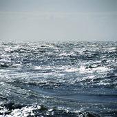 Glittrande havsyta