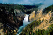 Yellowstone nationalpark, USA