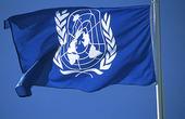 FN-flagga