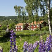 Bostadshus i Järvsö, Hälsingland