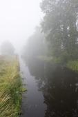 Dimma vid vattendrag