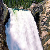 Lower Falls i Yellowstonefloden, USA