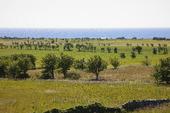 Naturlandskap, Gotland