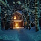 Vinterhus med julgran