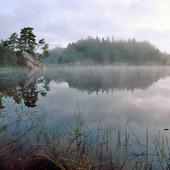 Morgondis på insjö
