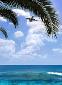 Flygplan i tropisk miljö