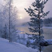 Umeälven, Lappland