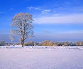 Landskap - vinter