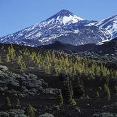 Vulkanen Teide på Teneriffa, Spanien