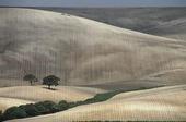 Jordbrukslandskap, Spanien