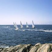 Segelbåtar i Bohusläns skärgård