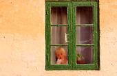 Liten flicka i fönster
