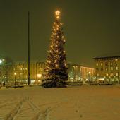 Julgran i Göteborg, vinter