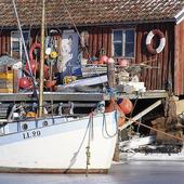 Fiskebåt i is, Bohuslän