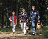 Familj på skogspromenad