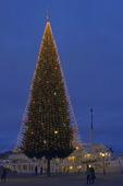 Julgran på Skeppsbron, Stockholm