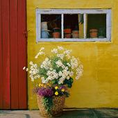 Prydnadsblommor vid hus i Danmark