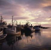 Fiskebåtar på Fotö, Bohuslän